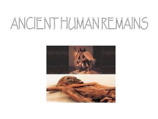 ANCIENT HUMAN REMAINS