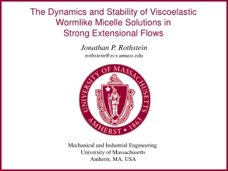 The Dynamics and Stability of Viscoelastic Wormlike Micelle Solutions in  Strong Extensional Flows