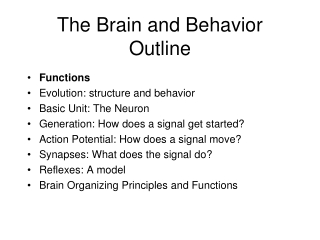 The Brain and Behavior Outline