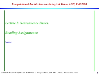 Computational Architectures in Biological Vision, USC, Fall 2004