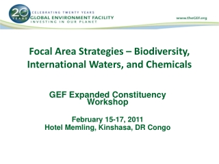 Focal Area Strategies – Biodiversity, International Waters, and Chemicals