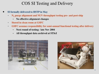 COS SI Testing and Delivery