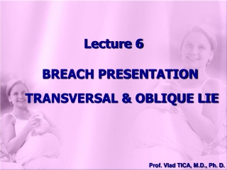 Lecture 6 BREACH PRESENTATION  TRANSVERSAL & OBLIQUE LIE