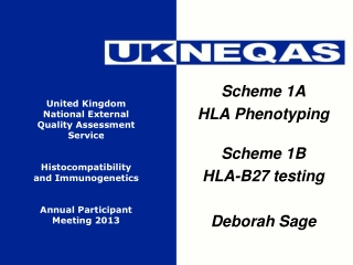 Scheme 1A HLA Phenotyping Scheme 1B HLA-B27 testing Deborah Sage