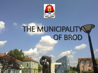 THE MUNICIPALITY  OF  BROD