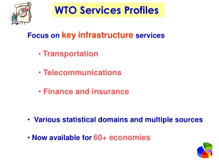 Focus on key infrastructure services Transportation Telecommunications Finance and insurance