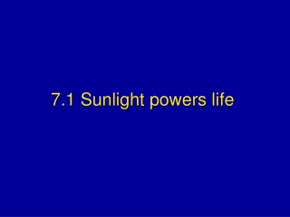 7.1 Sunlight powers life