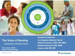 The Voice of Nursing Community of Practice Forum Pam Jensen, NPCS Senior Project Manager