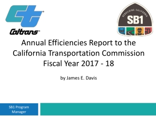 Efficiencies Report