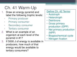Ch. 41 Warm-Up