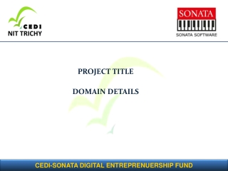PROJECT TITLE DOMAIN DETAILS