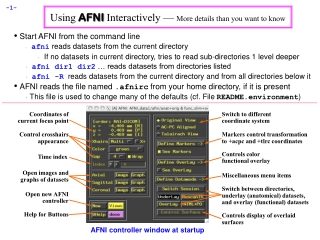 Using AFNI Interactively —  More details than you want to know