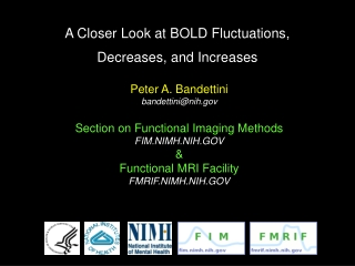 A Closer Look at BOLD Fluctuations, Decreases, and Increases
