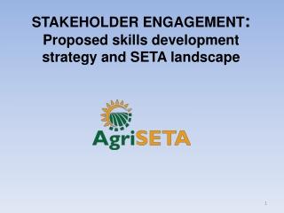 STAKEHOLDER ENGAGEMENT :  Proposed skills development strategy and SETA landscape