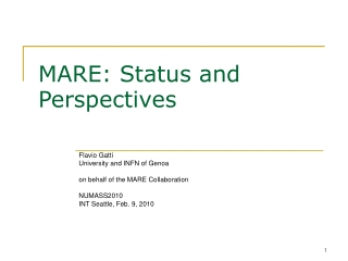 MARE: Status and Perspectives