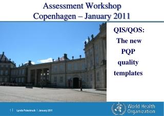 Assessment  Workshop Copenhagen – January 2011
