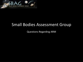 Small Bodies Assessment Group
