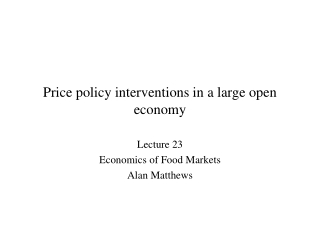 Price policy interventions in a large open economy