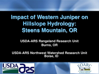 Impact of Western Juniper on Hillslope Hydrology:  Steens Mountain, OR