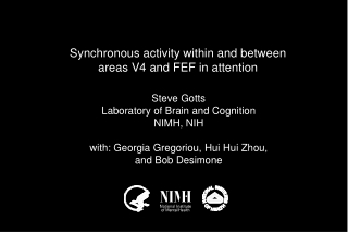 Synchronous activity within and between areas V4 and FEF in attention