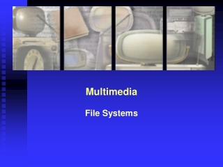 Multimedia File Systems