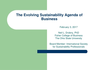 The Evolving Sustainability Agenda of Business