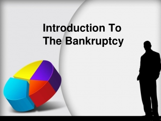 Introduction to the bankruptcy
