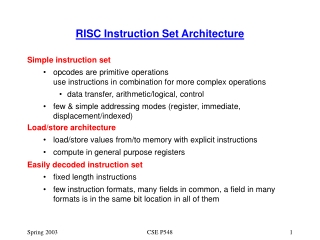 RISC Instruction Set Architecture
