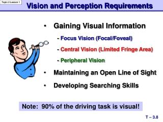 Gaining Visual Information -  Focus Vision (Focal/Foveal) -  Central Vision (Limited Fringe Area)