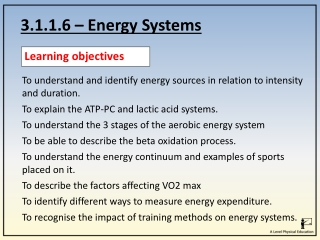 3.1.1.6 – Energy Systems