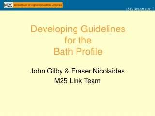 Developing Guidelines for the  Bath Profile