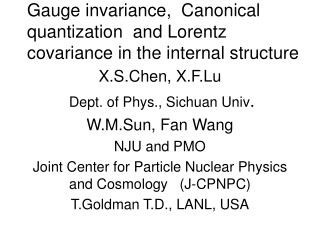 Gauge invariance,  Canonical quantization  and Lorentz covariance in the internal structure