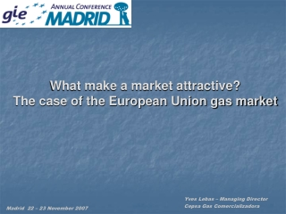 What make a market attractive? The case of the European Union gas market