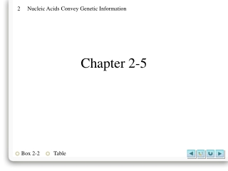 Chapter 2-5