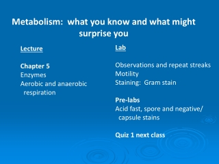 Metabolism:  what you know and what might surprise you