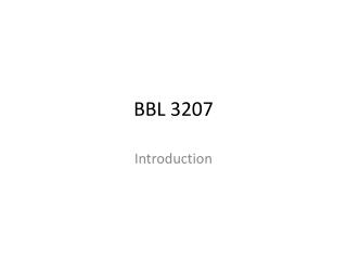 BBL 3207