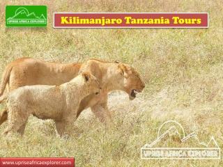 kilimanjaro Tanzania Tours