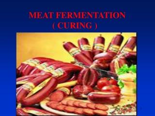 MEAT FERMENTATION                ( CURING )