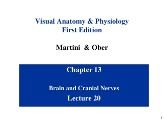 Visual Anatomy & Physiology First Edition Martini  &  Ober