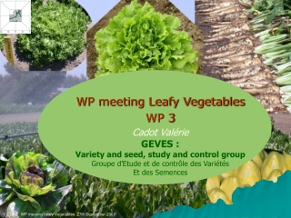 WP meeting Leafy Vegetables  WP 3 Cadot Valérie GEVES :
