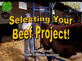 Celina Johnson Youth Livestock Specialist