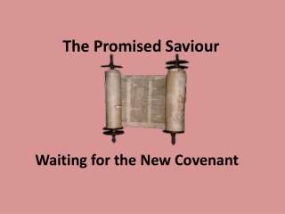 The Promised Saviour