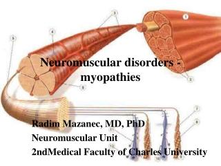 Neuromuscular disorders  -  myopathies