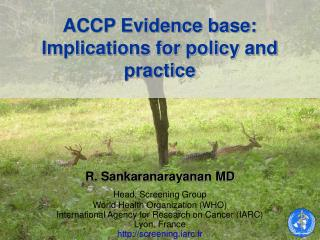 ACCP Evidence base: Implications for policy and practice