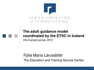 The adult guidance model coordinated by the ETSC in Iceland VALA project group, 2012