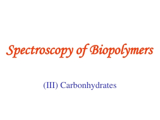 Spectroscopy of Biopolymers