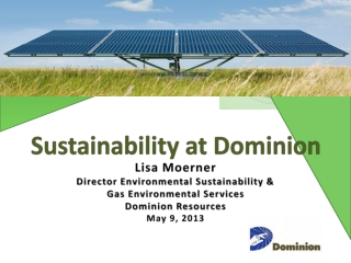 Lisa Moerner Director Environmental Sustainability & Gas Environmental Services Dominion Resources
