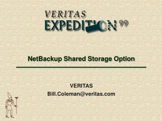 NetBackup Shared Storage Option
