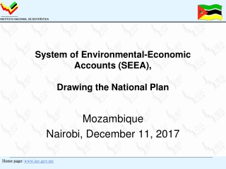 System of Environmental-Economic Accounts (SEEA),  Drawing the National Plan