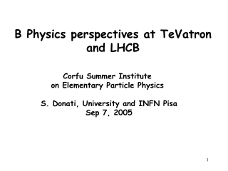 B Physics perspectives at TeVatron and LHCB